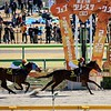 Cafe Pharoah wins the 2020 Hyacinth Stakes at Tokyo Racecourse. Photo: Naoji Inada