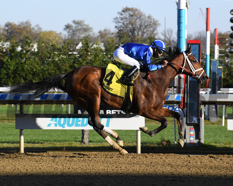 Malathaat wins the 2020 Tempted Stakes at Aqueduct<br /> Coglianese Photos