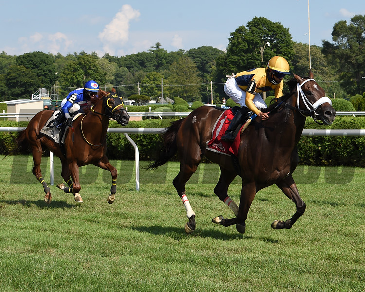 American Sailor (#2 on left) with jockey Tyler Gaffalione wins the 2020 Troy at the Saratoga Race Course Saturday when #1 Imprimis was placed third after an inquiry<br /> Coglianese Photos/Chris Rahayel