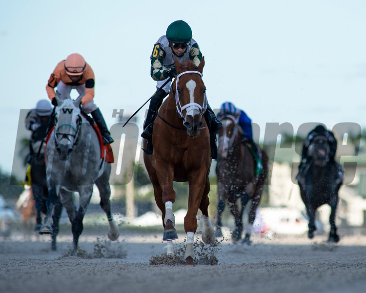 Ournationonparade - AOC, Gulfstream Park, December 2, 2020<br /> Coglianese Photos/Ryan Thompson