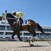 Septemberten - Maiden Win, Gulfstream Park, March 13, 2020<br /> Coglianese Photos/Ryan Thompson
