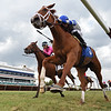 Eve of War - AOC, Gulfstream Park, April 24, 2020<br /> Coglianese Photos/Ryan Thompson