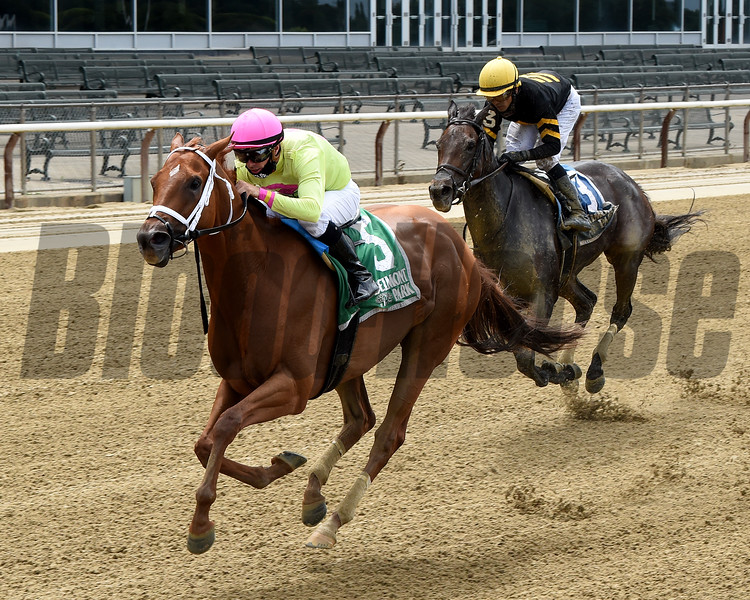 Monomoy Girl wins the Ruffian Stakes Saturday, July 11, 2020 at Belmont Park. Photo: Coglianese Photos/Chelsea Durand