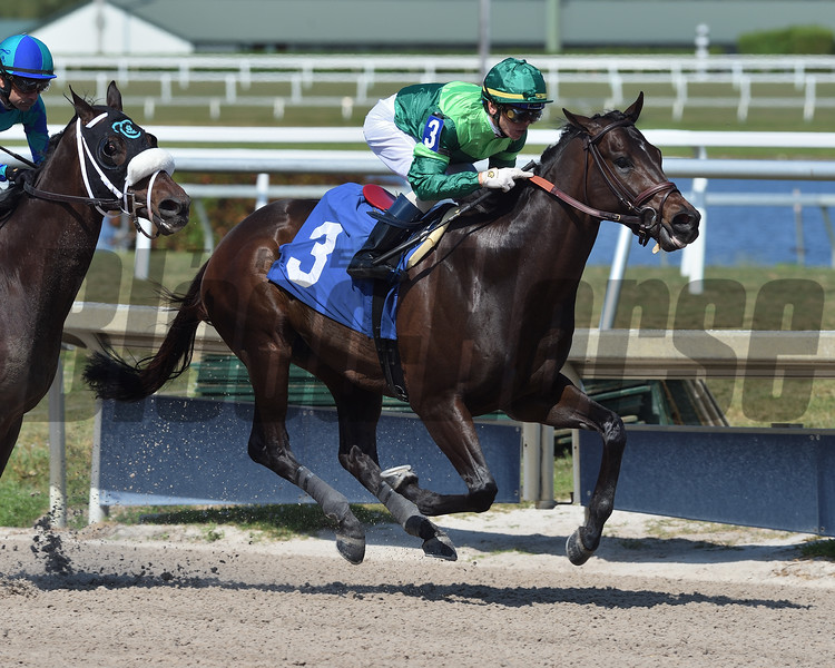 Candy Machine - Maiden Win, Gulfstream Park, April 3, 2020     <br /> Coglianese Photos/Ryan Thompson