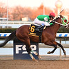 Mischevious Alex wins the 2020 Gotham Stakes at Aqueduct<br /> Coglianese Photos/Susie Raisher