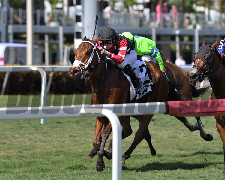 Texas Wedge wins the 2020 World of Trouble Turf Sprint Stakes<br /> Coglianese Photos/Ryan Thompson