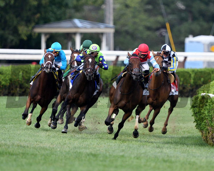 Rushing Fall wins the Diana Stakes Sunday, August 23, 2020 at Saratoga Race Course. Photo: Coglianese Photos/Dom Napolitano
