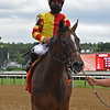 Dayoutoftheoffice wins the 2020 Schuylerville Stakes at Saratoga<br /> Coglianese Photos/Chelsea Durand