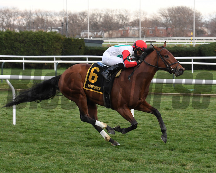 Turned Aside wins the 2020 Aqueduct Turf Sprint Championship Stakes<br /> Coglianese Photos/Susie Raisher