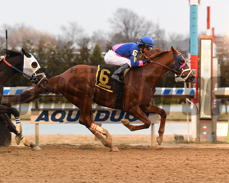 Arthur's Hope wins the 2020 Say Florida Sandy Stakes at Aqueduct<br /> Coglianese Photos/Susie Raisher