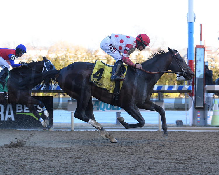 Mind Control wins the 2020 Tom Fool at Aqueduct<br /> Coglianese Photos/Susie Raisher