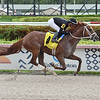 Summer Kids wins a maiden special weight Sunday, June 21, 2020 at Gulfstream Park. Photo: Coglianese Photos/Lauren King