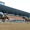 Kept True wins the 2020 Broadway Stakes at Aqueduct<br /> Coglianese Photos