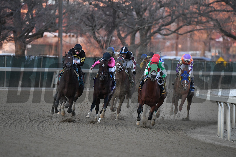 Mischevious Alex wins the 2020 Gotham Stakes at Aqueduct<br /> Coglianese Photos/Robert Mauhar