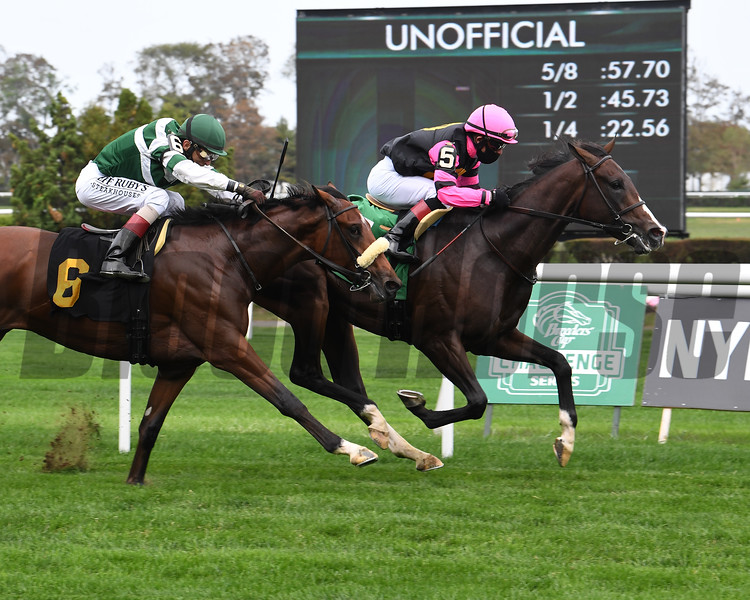Chrome Dixie wins maiden special weight Sunday, October 11, 2020 at Belmont Park. Photo: Coglianese Photos