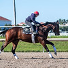 Dennis' Moment - Gulfstream Park - 012520. Photo: Joe DiOrio