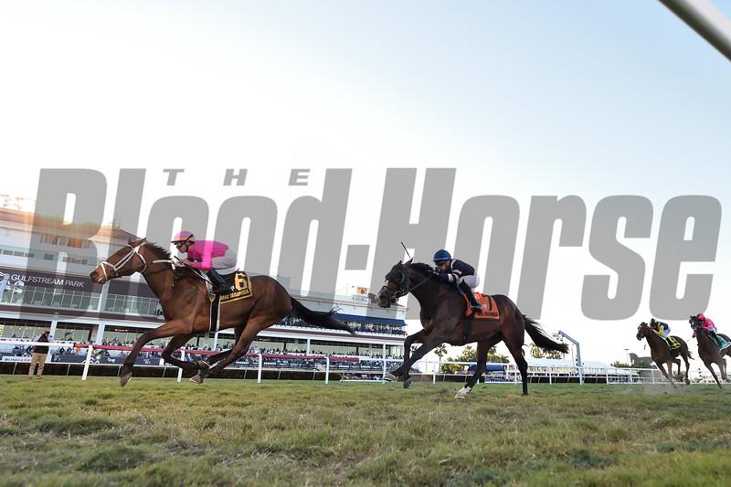 Zulu Alpha wins the 2020 Mac Diarmida Stakes at Gulfstream Park. Photo: Coglianese Photos