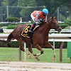 Introduced wins the 2020 Smart N Fancy Stakes at Saratoga<br /> Coglianese Photos