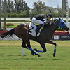 I Am the Boss - Maiden Win, Gulfstream Park, August 13, 2020<br /> Coglianese Photos/Lauren King