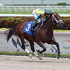 Competitive Saint - Maiden Win, Gulfstream Park, May 3, 2020<br /> Coglianese Photos/Ryan Thompson