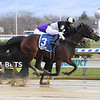 Sharp Starr wins the 2020 Go for Wand Handicap at Aqueduct<br /> Coglianese Photos/Janet Garaguso