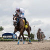 Hara - Maiden Win, Gulfstream Park, June 19, 2020<br /> Coglianese Photos/Ryan Thompson