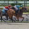 Say Cheese - Maiden Win, Gulfstream Park, June 14, 2020<br /> Coglianese Photos/Lauren King