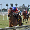 Mean Mary wins the Grade 3 Orchid stakes at Gulfstream Park on 3/28/20. Luis Saez up