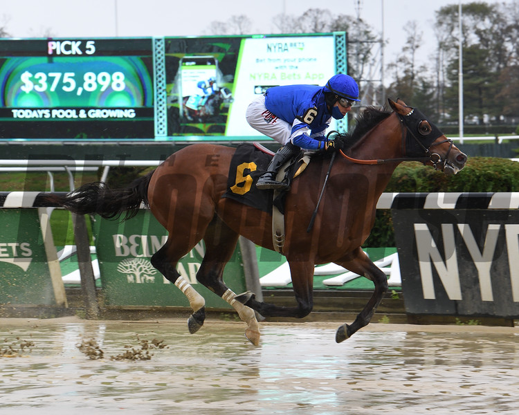 Highway Bound wins a maiden special weight October 30, 2020 at Belmont Park. Photo: Coglianese Photos