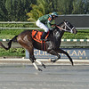 Poppy's Pride wins the 2020 Juvenile Sprint Stakes at Gulfstream Park West<br /> Coglianese Photos/Lauren King