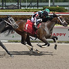 Simple Story - Maiden Win, Gulfstream Park, March 25, 2020<br /> Coglianese Photos/Lauren King
