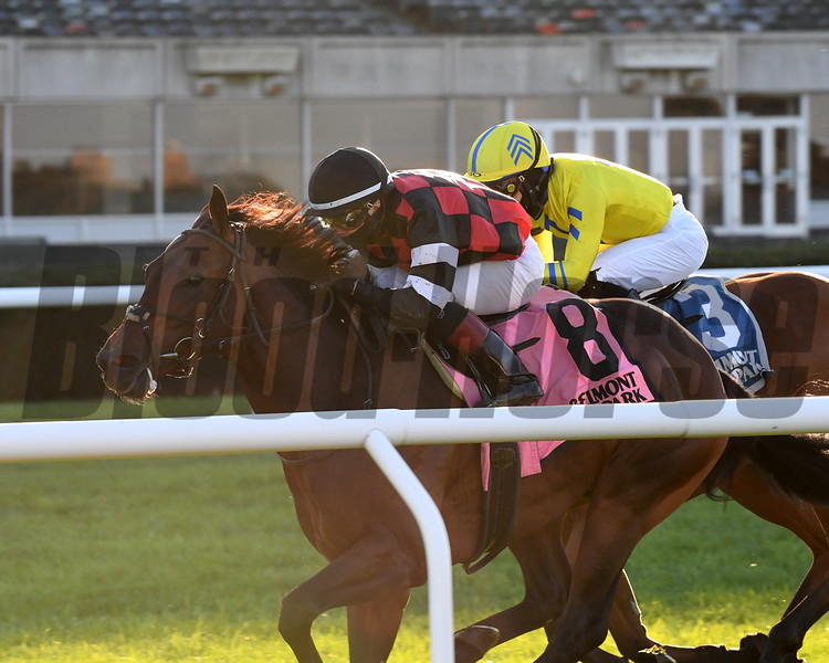 Step Dancer wins the 2020 Awad Stakes at Belmont Park<br /> Coglianese Photos/Chelsea Durand