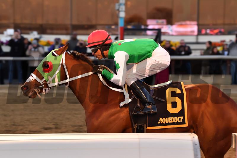 Mischevious Alex wins the 2020 Gotham Stakes at Aqueduct<br /> Coglianese Photos/Joe Labozzetta