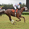 Monforte wins the 2020 Showing Up Stakes at Gulfstream Park West<br /> Coglianese Photos/Lauren King