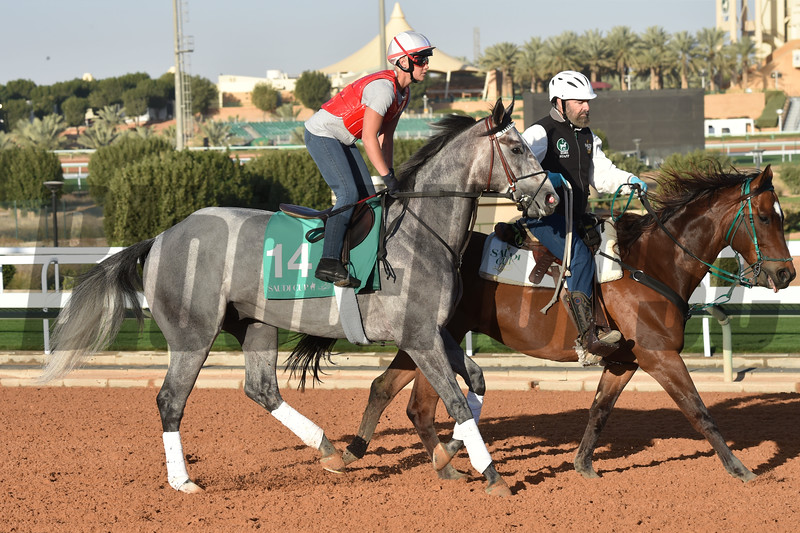 Tacitus - King Abdulaziz Racetrack, Riyadh - February 28, 2020<br /> Photo: Katsumi Saito
