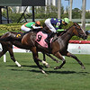 Lady Boss - Maiden Win, Gulfstream Park, July 26, 2020<br /> Coglianese Photos/Lauren King