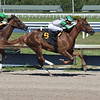 Key Biscayne - Maiden Win, Gulfstream Park, May 1, 2020<br /> Coglianese Photos/Lauren King