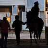 Caption: horse prepares to go to track for training, Kelly Wheeler on horse. <br /> Behind the Scenes at Keeneland during Covid19 virus and the people, horses, and essentials needed to take care of race horses on April 2, 2020 Keeneland in Lexington, KY.