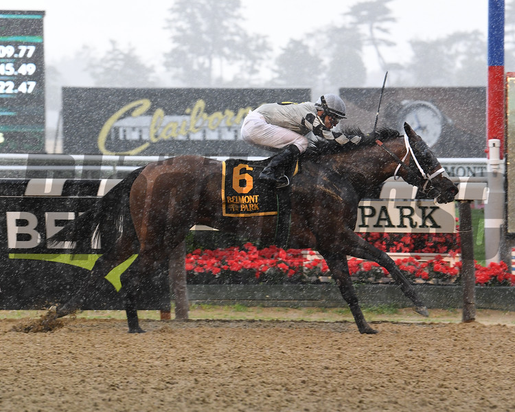 Victim of Love wins the 2020 Vagrancy Stakes at Belmont Park<br /> Coglianese Photos/Susie Raisher