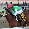 Diamond King wins the 2020 Stymie Stakes at Aqueduct.<br /> Coglianese Photos/Elsa Lorieul