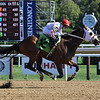 Saratoga Pal - Maiden Win, Saratoga, September 4, 2020<br /> Coglianese Photos