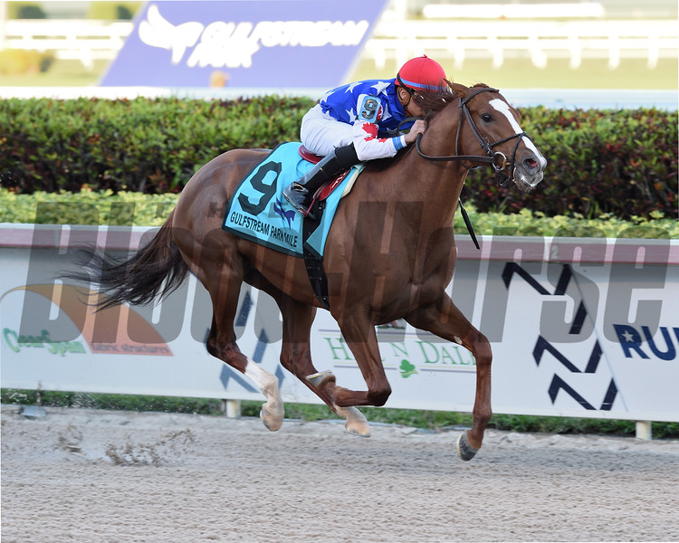 Mr Freeze wins the 2020 Gulfstream Park Mile Stakes<br /> Coglianese Photos/Lauren King