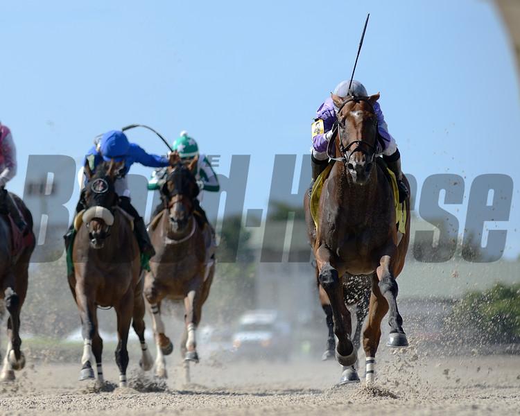 Cool Arrow wins an allowance optional claiming race Sunday, June 21, 2020 at Gulfstream Park. Photo: Coglianese Photos/Ryan Thompson
