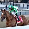 Mr. Buff wins the 2020 Haynesfield Stakes at Aqueduct<br /> Coglianese Photos/Joe Labozzetta