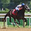 Nutsie - Maiden Win, Saratoga, August 13, 2020<br /> Coglianese Photos/Chelsea Durand