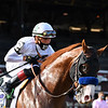 Improbable wins the 2020 Whitney at Saratoga<br /> Coglianese Photos/Joe Labozzetta
