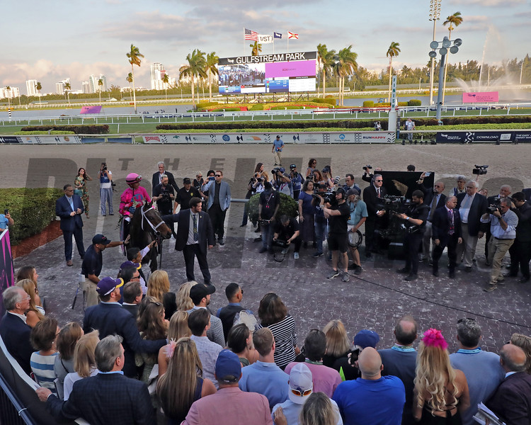 Zulu Alpha with Tyler Gaffalione up wins the PWC Invitational Turf for trainer Mike Maker and owner Mike Hui. Photo: Photos by Z