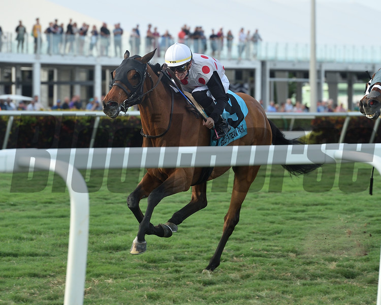March to the Arch wins the 2020 Sunshine Millions Turf Stakes at Gulfstream Park<br /> Coglianese Photos/Derbe Glass