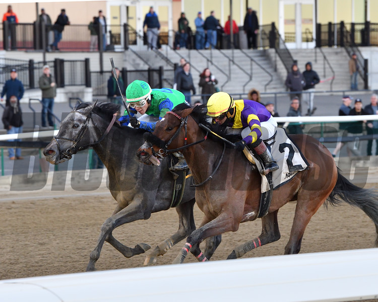 Water White wins the 2020 Busher Stakes at Aqueduct<br /> Coglianese Photos/Joe Labozzetta