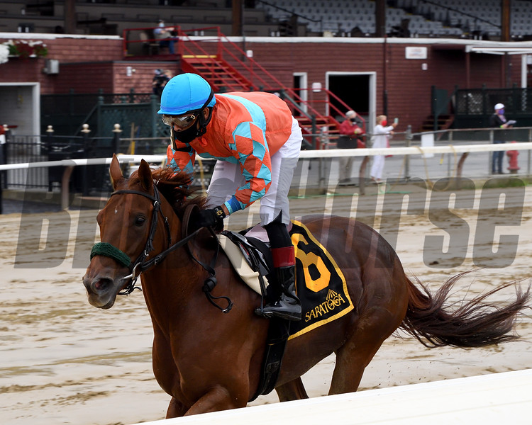 Introduced wins the 2020 Smart N Fancy Stakes at Saratoga<br /> Coglianese Photos/Chelsea Durand